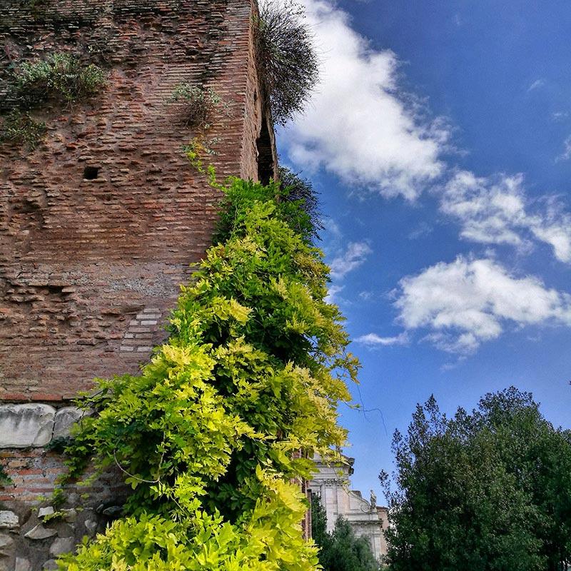 Rome, la Ville Éternelle et son Forum Romain