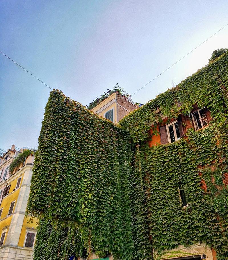 Rome, La Ville Éternelle et ses murs recouverts de plantes grimpantes