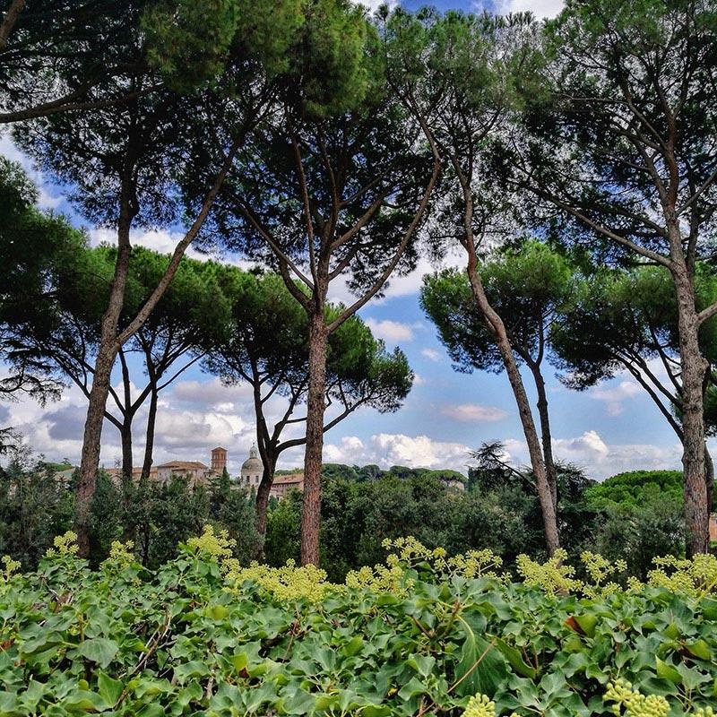 Rome, la Ville Éternelle et sa nature luxuriante