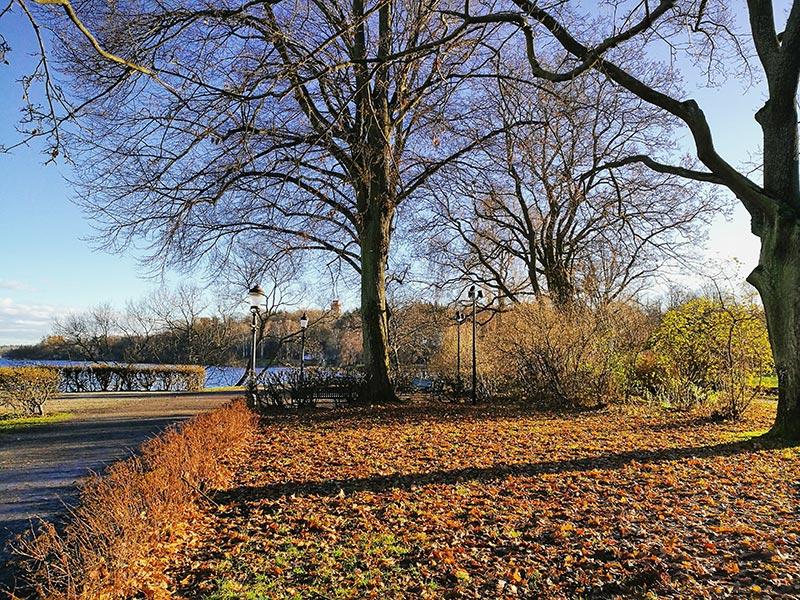 La naturaleza de Estocolmo y sus parques ecológicos