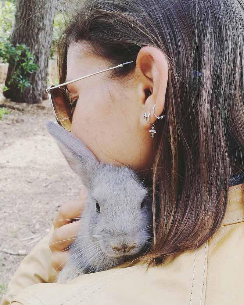 Le véganisme et l'amour pour les animaux