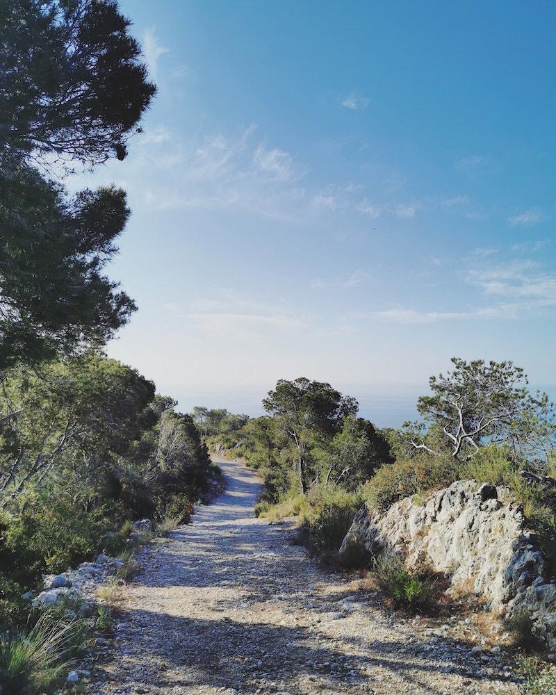 Vida Lenta, Felicidad Eterna: Libro de meditación y poesía